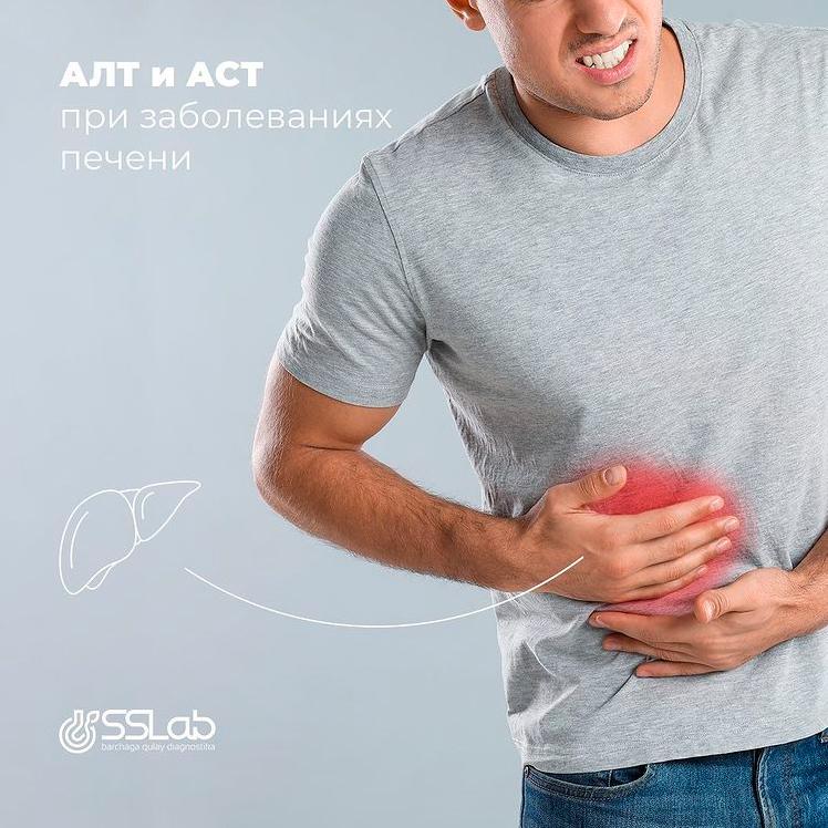 АЛТ и АСТ при заболевании печени